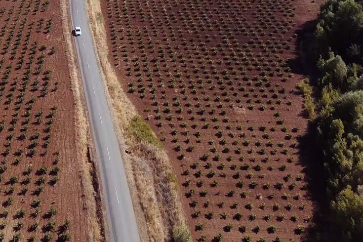 Ruta del Vino y Cava Ribera del Guadiana